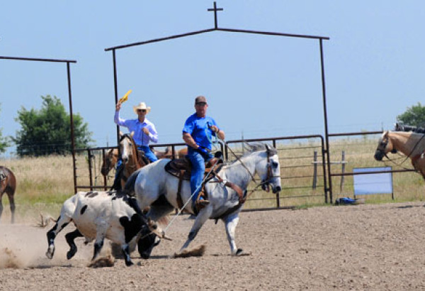 Team Roping in the Arena